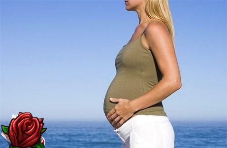 Embarazo - semana 15: signos, síntomas, uzi