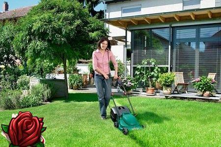 Hjemmelavet topdressing græsplæne
