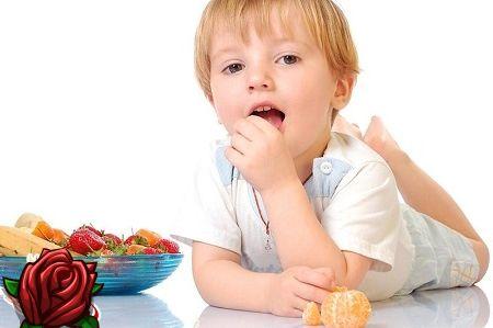 Dieet allergikutele