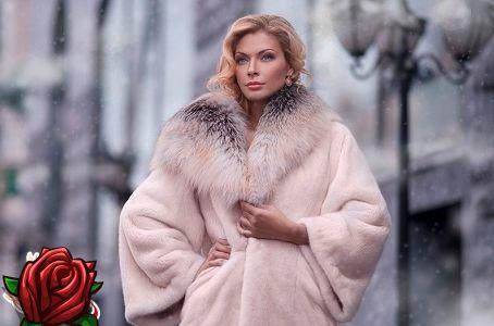 Como escolher um casaco de pele de castor: recomendações para uma compra bem sucedida