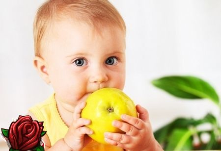 Do que alimentar o garoto de dois anos