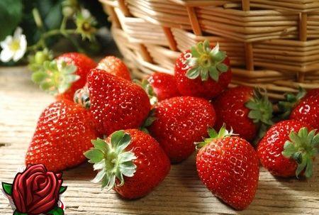 Reparert jordbær: Varianter av økt utbytte, fruktbærende til frost