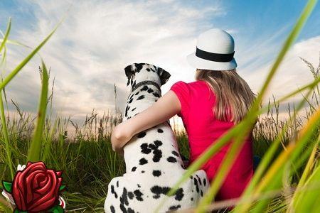 Kuidas valida õige koer?
