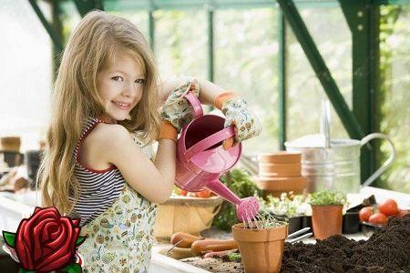 Bērnu dārza stūrītis ar savām rokām